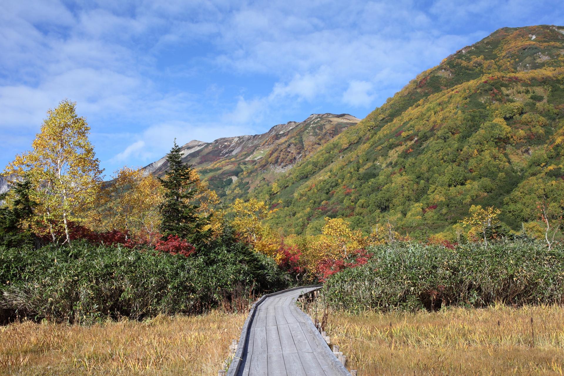 hakuba-landscape