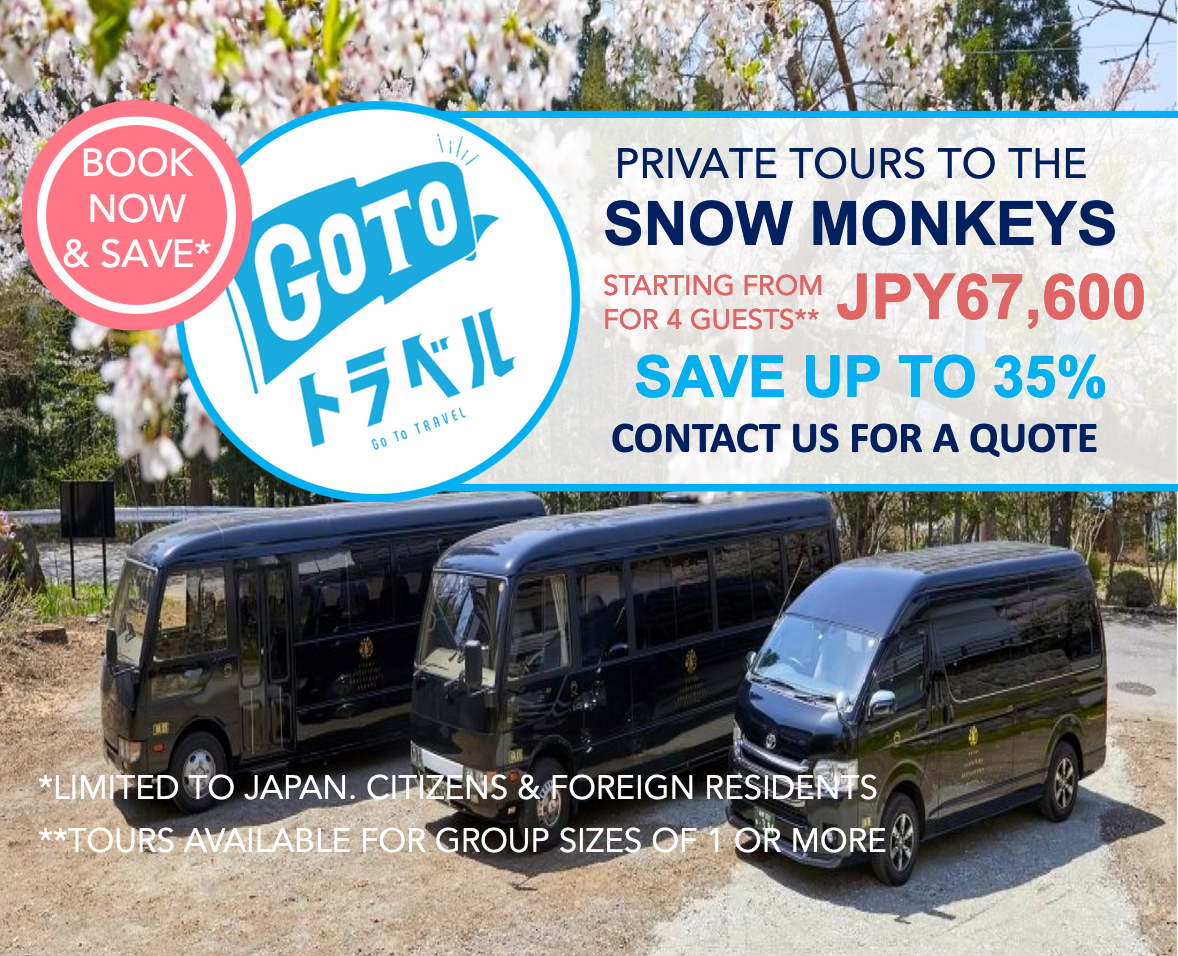 'Go To Travel': Private Tours to the Snow Monkey Park