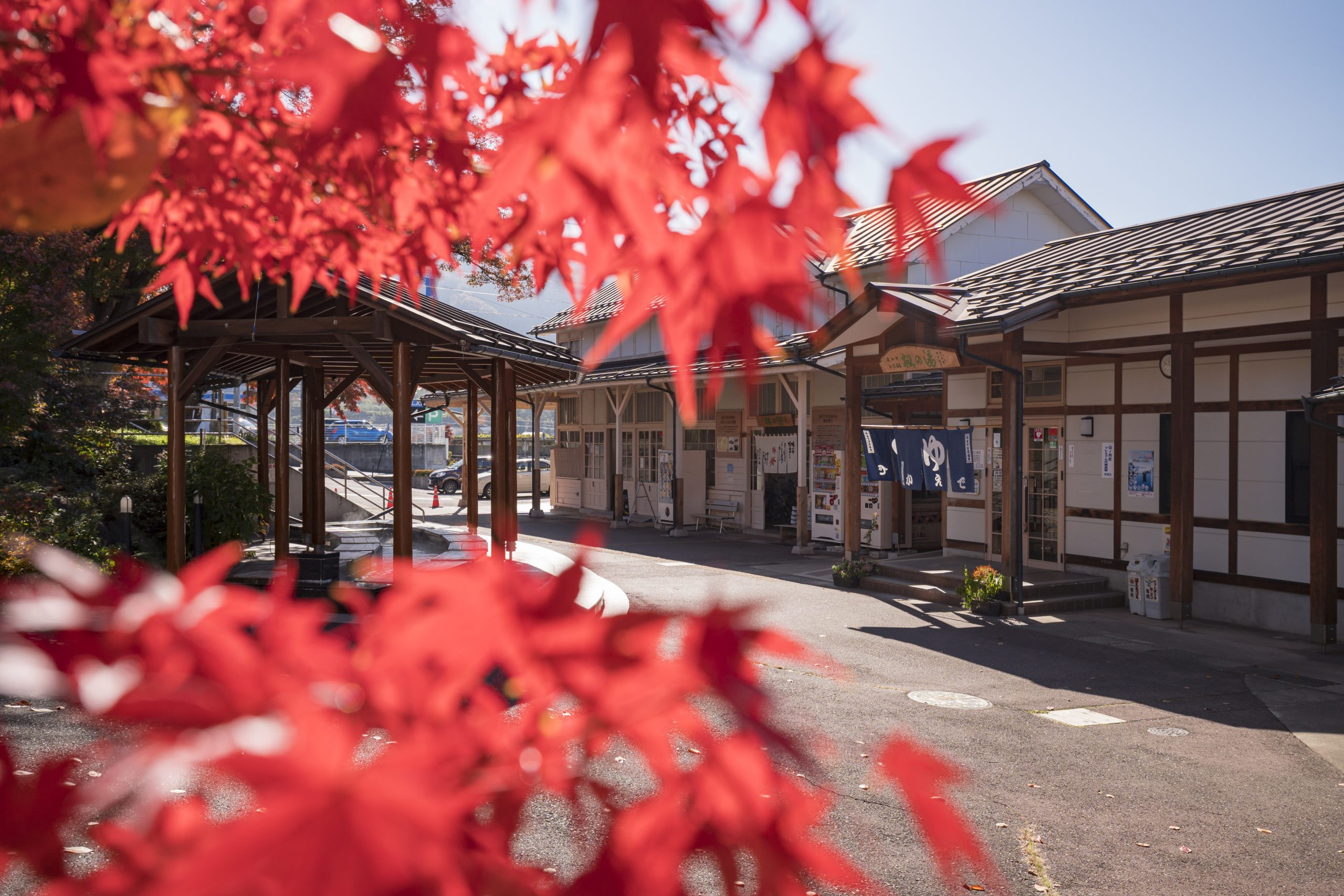 kaede-no-yu-yudanaka-onsen-autumn-leaves