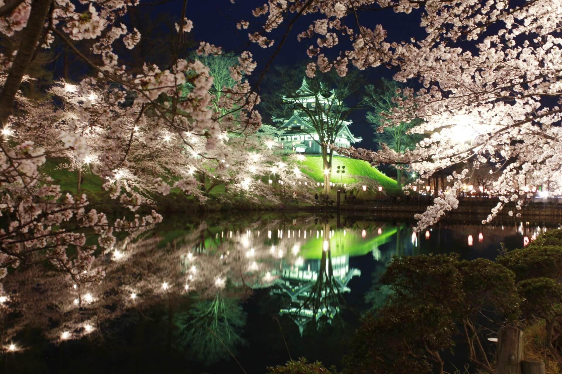 takada-castle-park-blossoms
