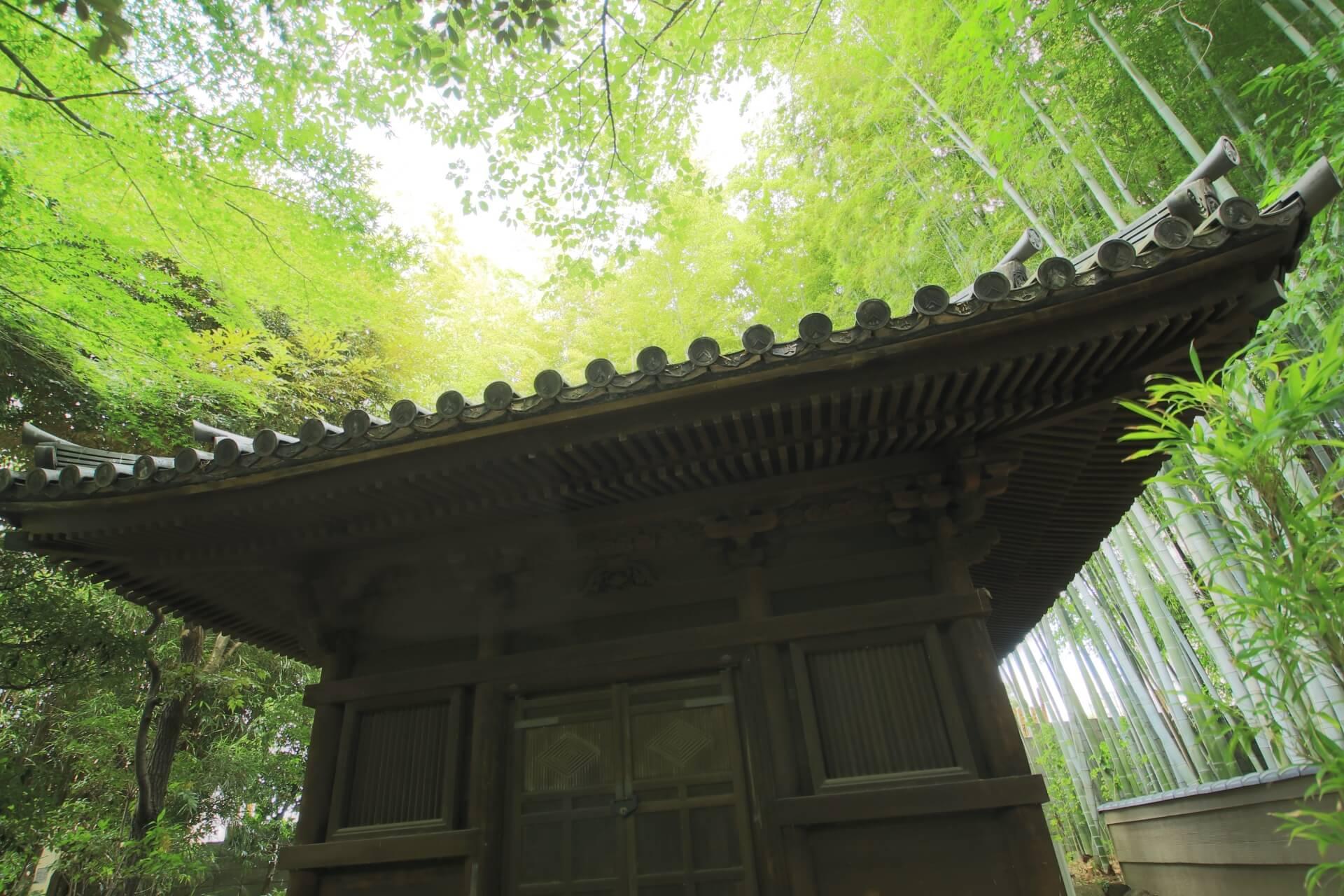 nezu-museum-tokyo