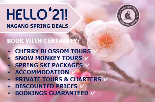 hello21-spring-banner