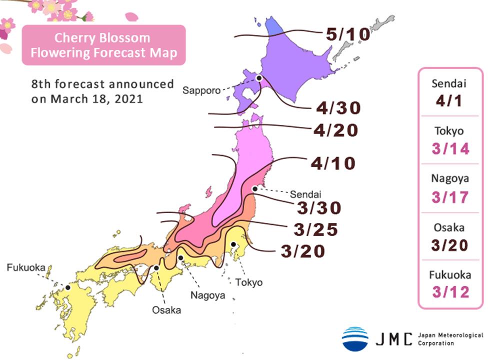 cherry-blossom-forecast-amp