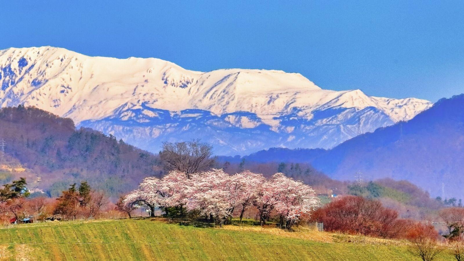 nagano-landscape