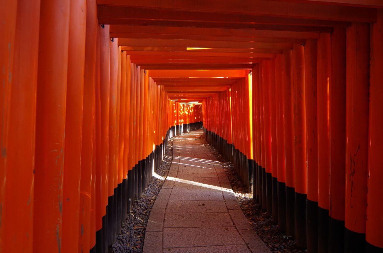kyoto-fushimi-inari-taisha