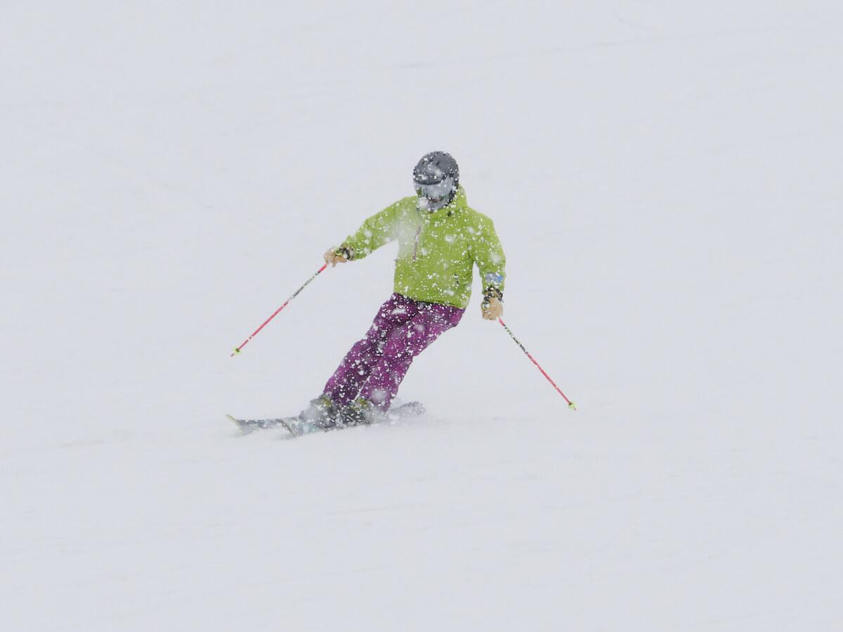 ski-general