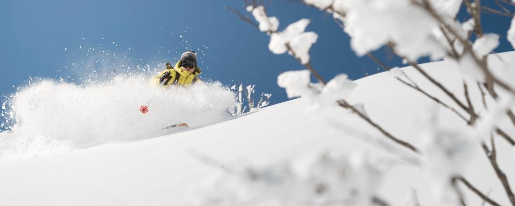 hakuba-ski-banner