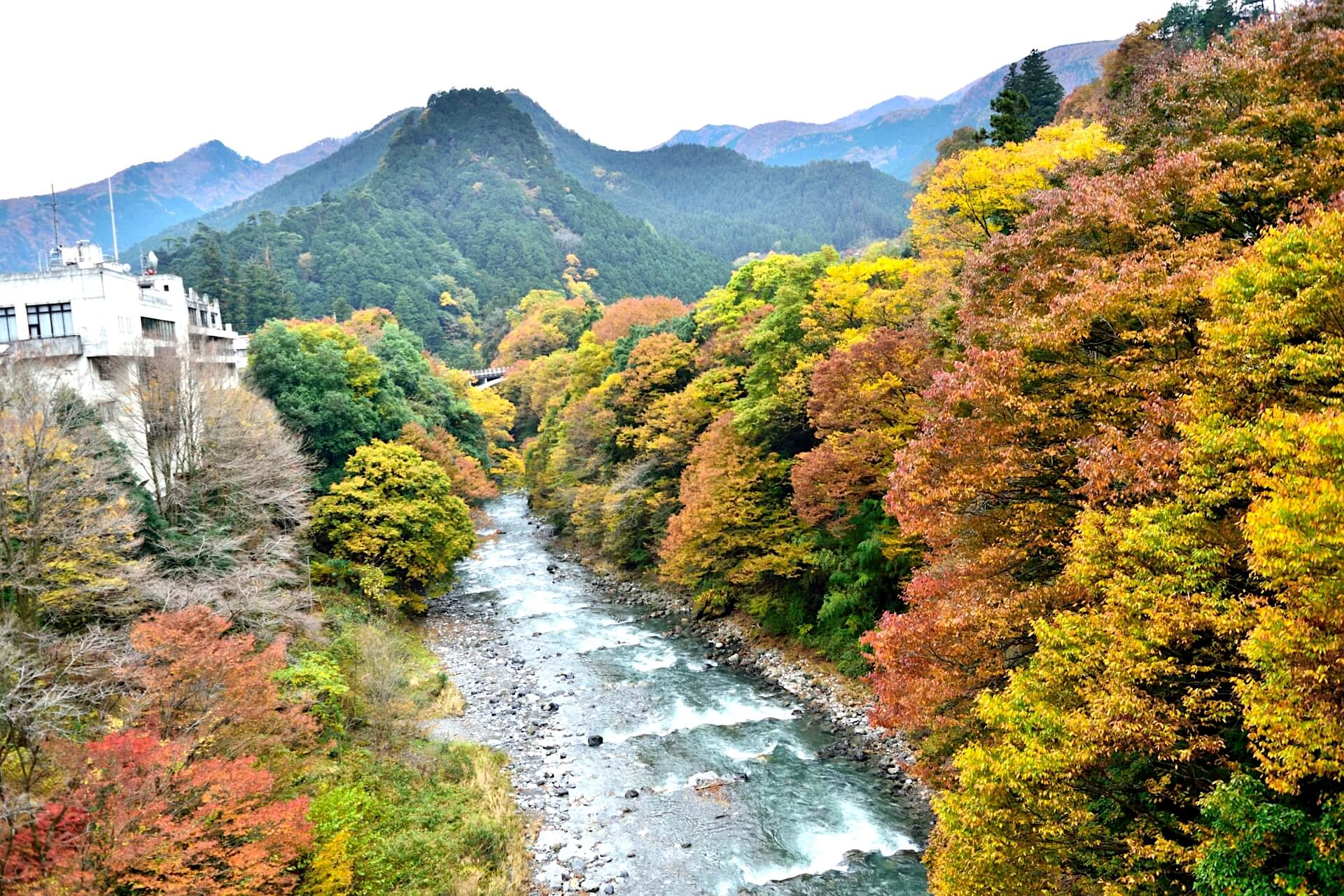 hikawa-valley-tokyo