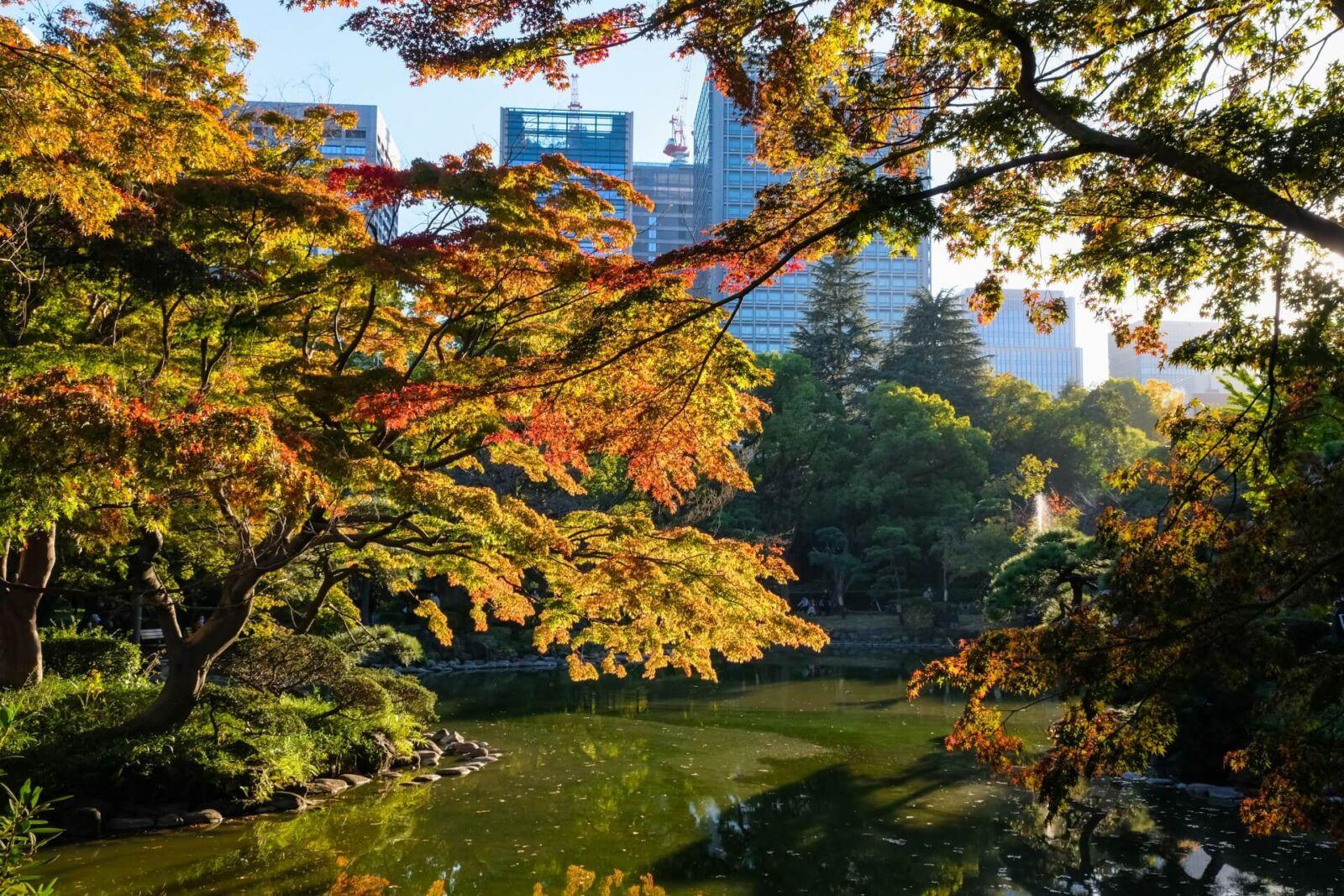hibiya-park-tokyo