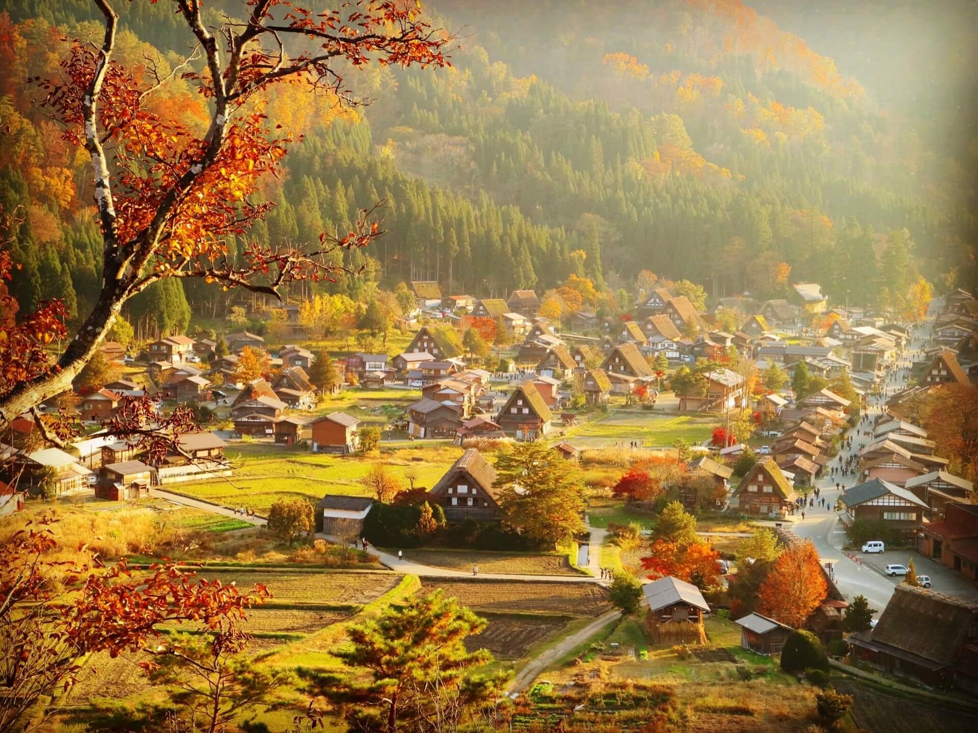 shirakawa-autumn