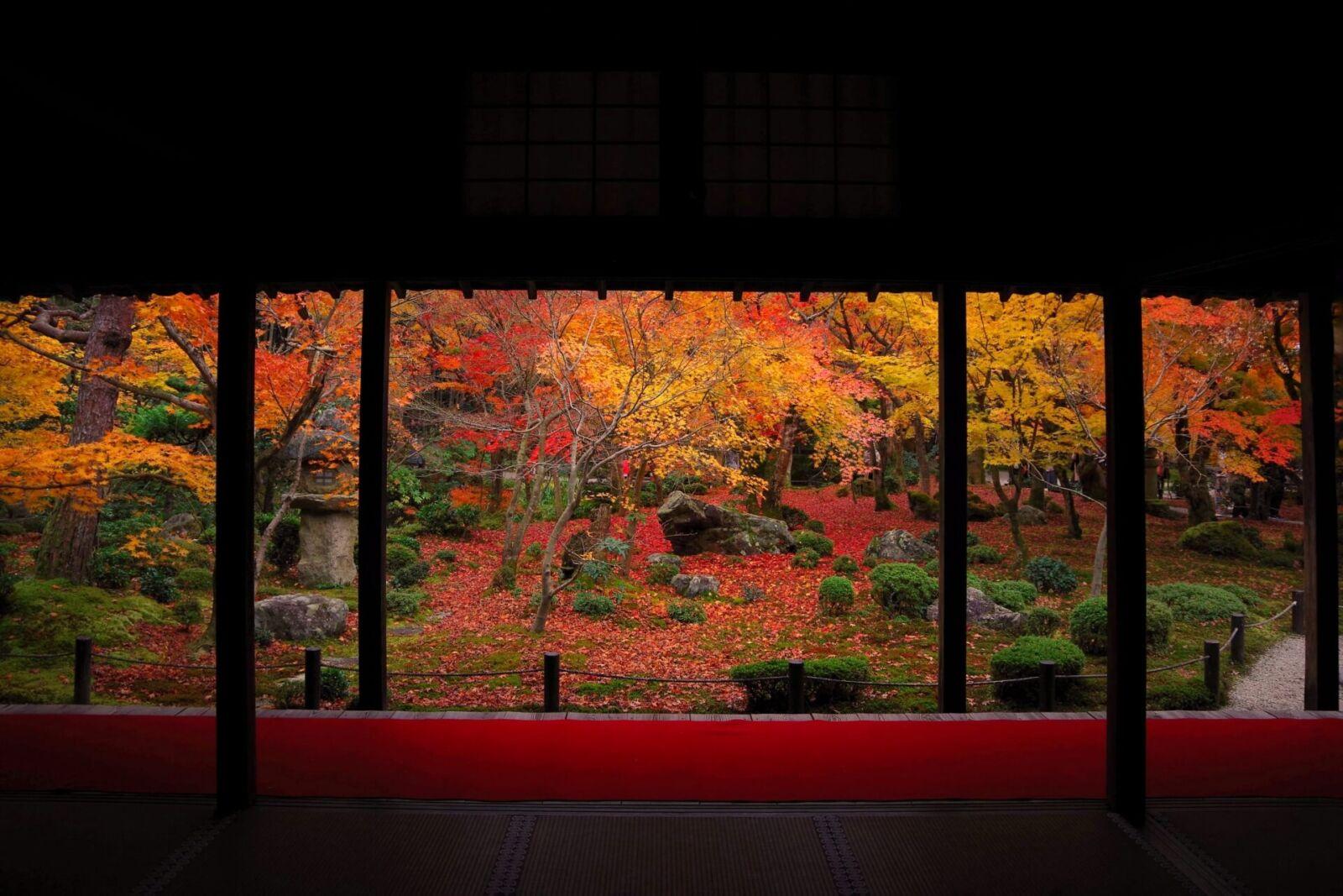 enkoji-kyoto
